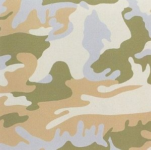 Andy Warhol, Camouflage, 1987 Screenprint on Lenox Museum Board (F&S.II.407)