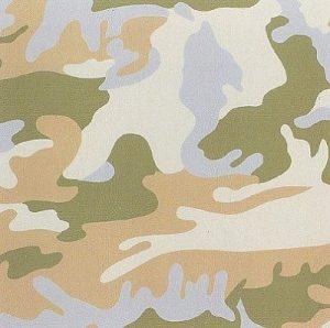 Andy Warhol, Camouflage, 1987 Screenprint on Lenox Museum Board (F&S.II.407)
