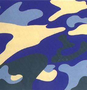 Andy Warhol, Camouflage, 1987 Screenprint on Lenox Museum Board (F&S.II.411)