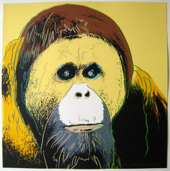 Orangutan 1983