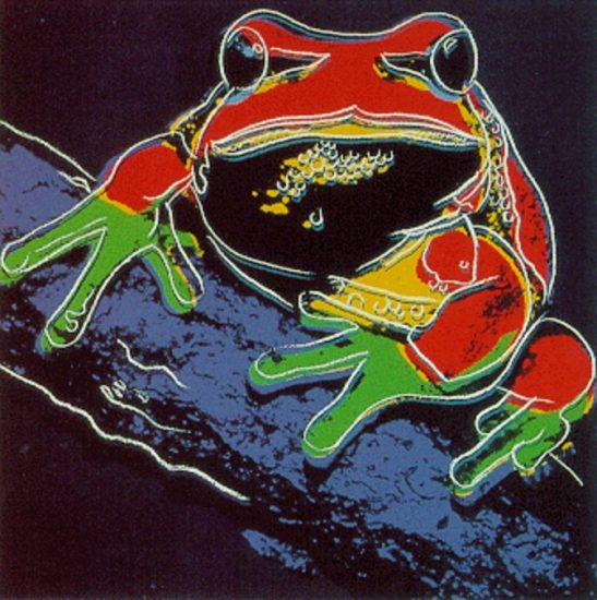 Pine Barrens Tree Frog 1983