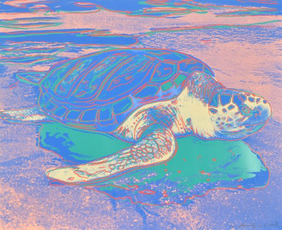 Andy Warhol Screen Print, Turtle, 1985