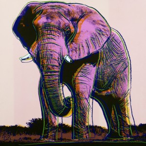 Andy Warhol Endangered Species, African Elephant